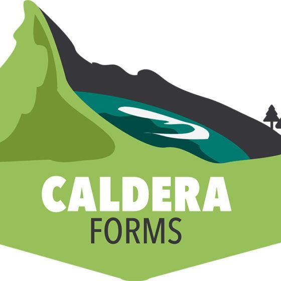 Настройка целей Метрики Caldera Forms
